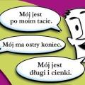 Header_Jaki_jest
